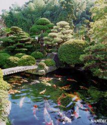 Nguyên tắc cần lưu ý khi thiết kế sân vườn theo phong cách Nhật Bản